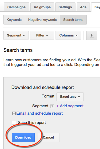 search terms export report